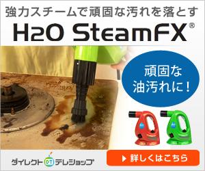 0120131300|スチームFX|汚れが簡単キレイにとれる♪|ダイレクトテレショップ