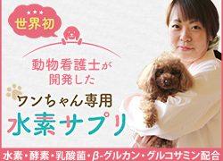0120119032|【ビオワンファイン】動物看護士が開発したワンちゃん専用水素サプリ|新日本水素株式会社