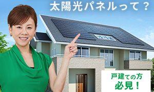 0120981132|じぶん電力 シミュレーション申し込み|太陽光パネルを無料で設置できる!|株式会社日本エコシステム