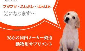 0354288779|【パンフェノン】犬の皮膚病に安心して飲み続けられる動物専用のサプリ|株式会社スケアクロウ