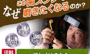 0120398018|ころころ歯ブラシ|歯磨きの常識を変えた新感覚歯ブラシ|株式会社やまちや